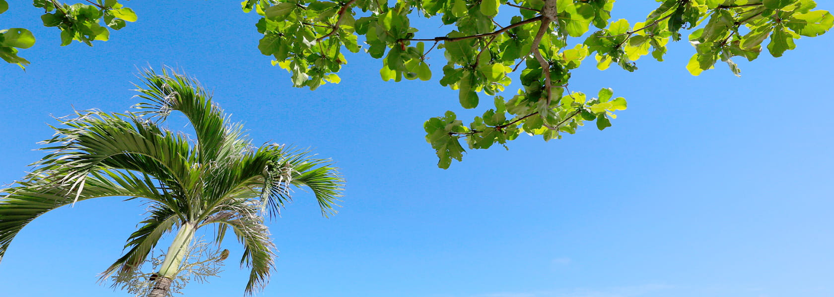 イメージ:宮古島